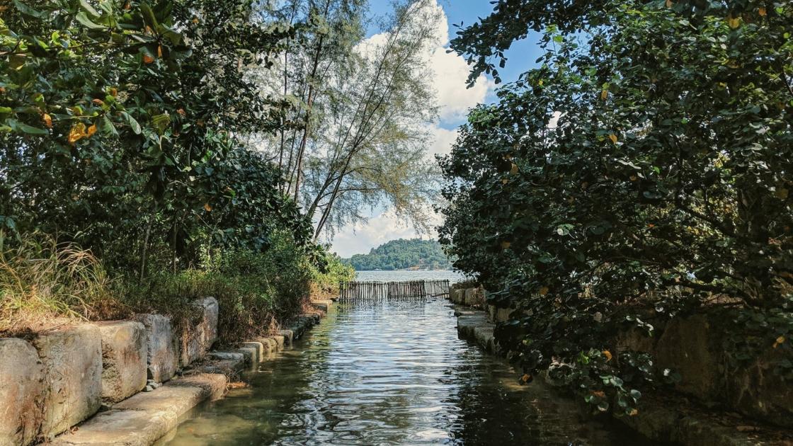 hiking in singapore